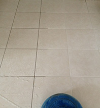 Tile & Grout Cleaning Services Brisbane