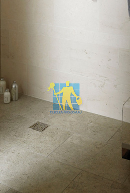 limestone tiles shower moleanos blue Everton Park cleaning